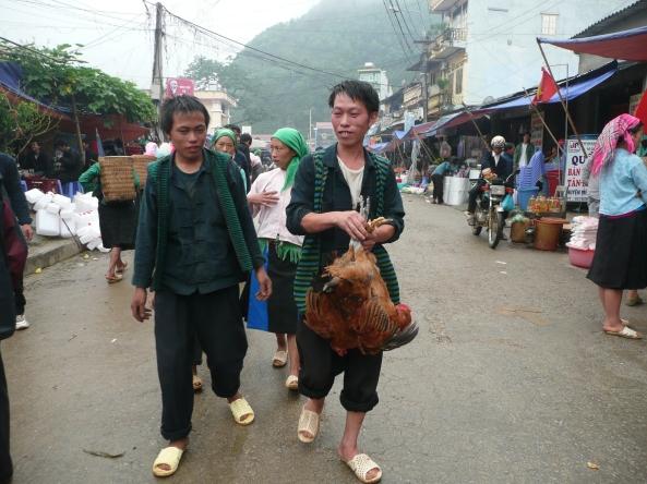 Vendre le poules au marche