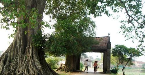 Village de Duong Lam