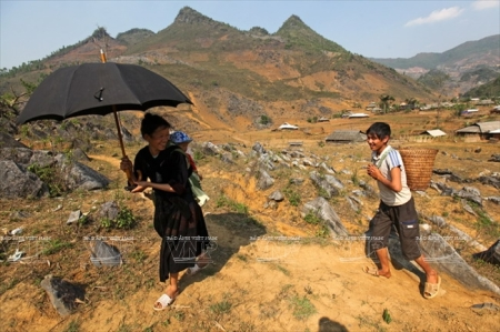 les-hmong-vivent-en-hamonie-avec-la-nature