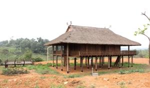 maison-des-thai